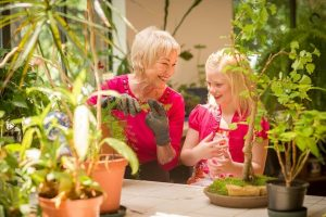 The Springmoor Greenhouse is a wonderful place to teach your grandchildren a few gardening tips