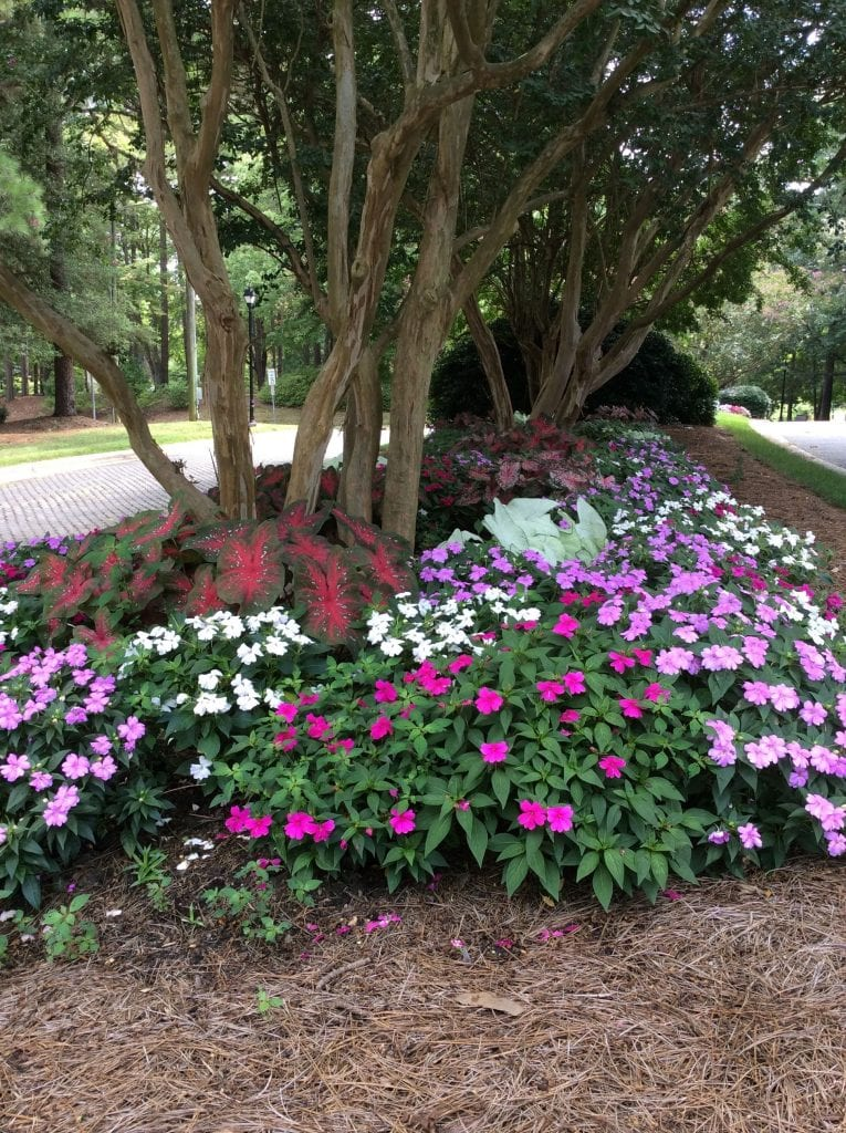 Color can be found throughout the campus
